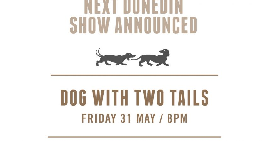 DWTT Announcement, , The Big Lawn, Dunedin Sound, New Zealand Music, Rock Band